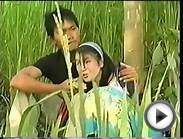Hmong New Movies Release 2015 - 2016 Full Move HD